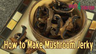how to make mushroom jerky,how to make mushroom biltong,homemade mushroom jerky,homemade mushroom biltong,vegetarian mushroom jerky,vegetarian mushroom biltong,vegan mushroom jerky,vegan mushroom biltong,making mushroom jerky at home,making mushroom biltong at home,mushroom jerky snack,mushroom biltong snack
