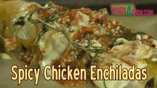 chicken enchiladas recipe,chicken enchiladas recipe youtube,chicken enchiladas video recipe,how to make chicken enchiladas,homemade chicken enchiladas,best chicken enchiladas recipe,authentic chicken enchiladas,mexican chicken enchiladas recipe,best spicy chicken enchiladas,best enchiladas recipe,simple chicken enchiladas recipe,how to make chicken enchiladas,hot and spicy chicken enchiladas