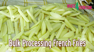 french fries,how to make,bulk processing french fries,homemade french fries,frozen french fries,how to,recipe,food,batch processing french fries,making bulk french fries,making and portioning french fries,making frozen french fries,french fries from scratch,fries,recipes,kfc chicken recipe,kfc recipe,cooking,kfc secret recipe,homemade,kfc hot wings,burger bun recipe,how to make kfc chicken,how to make apple cider vinegar at home,spring roll wrapper recipe
