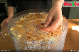 How to Dry Onions