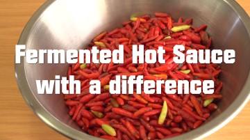 Fermented Hot Sauce